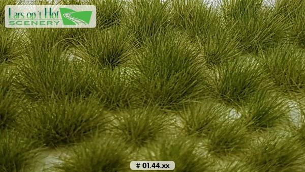 Grasbüschel Spätsommer lang 15 x 21 cm