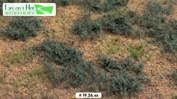 Grasmatte Wüste mit Beifuß - Typ 2