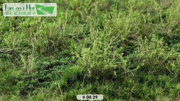 Wildwuchs mit Unkraut Sommer 15 x 21 cm