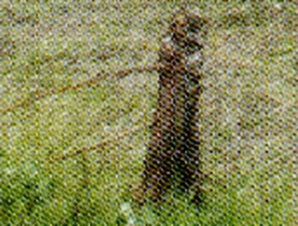 Eck- und Torpfosten für Weidezaun