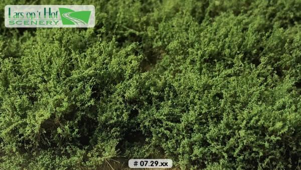 Büsche mittelgrün hoch 15 x 21 cm