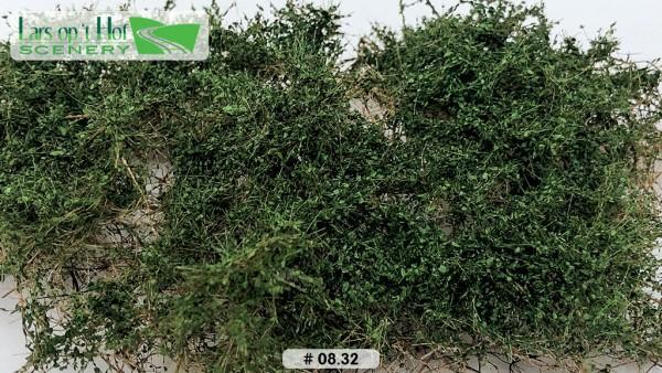 Dornbüsche Duneklgrün